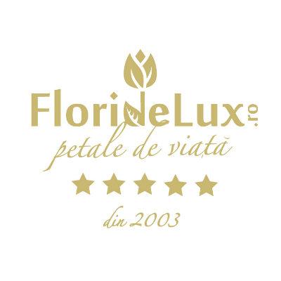 Logo Floridelux.ro